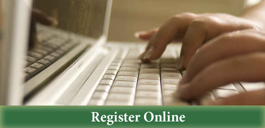 RegisterOnlineI